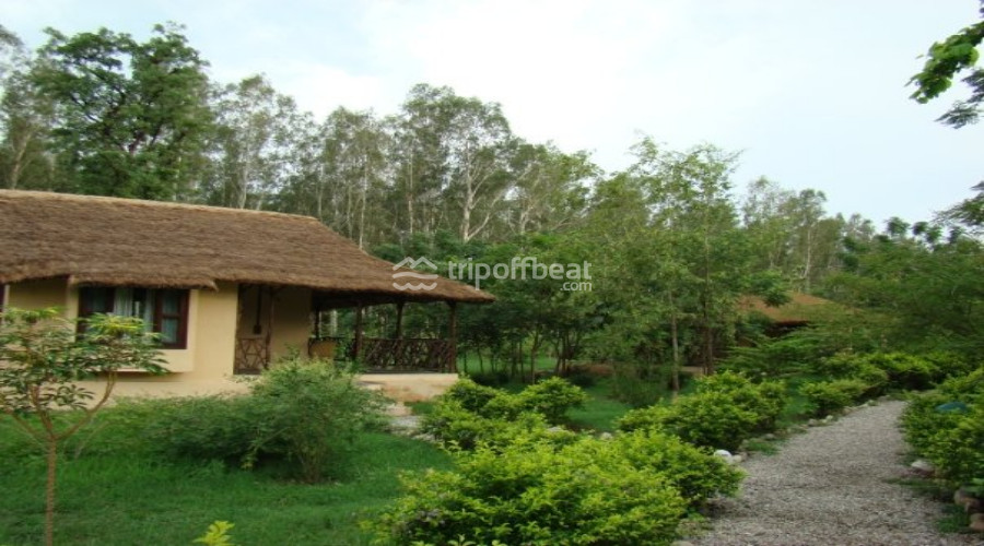 jim's-jungle-retreat-corbett-uttarakhand-17-book-best-offbeat-resorts-tripoffbeat