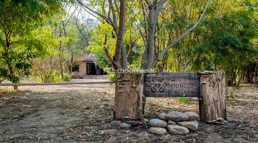 jim's-jungle-retreat-corbett-uttarakhand-4-book-best-offbeat-resorts-tripoffbeat