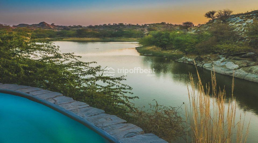 lakshman-sagar-pali-rajasthan-resort-026-book-best-offbeat-resorts-tripoffbeat
