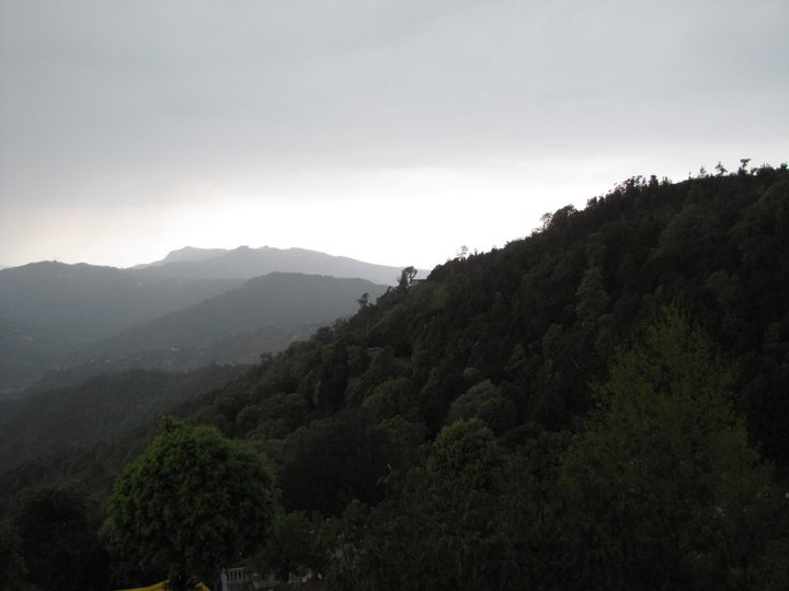 te-aroha-mukteshwar-uttarakhand-49-book-best-offbeat-resorts-tripoffbeat