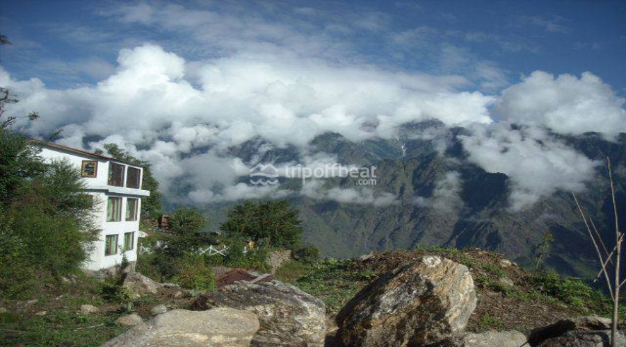 xra-auli-uttarakhand-13-book-best-offbeat-resorts-tripoffbeat